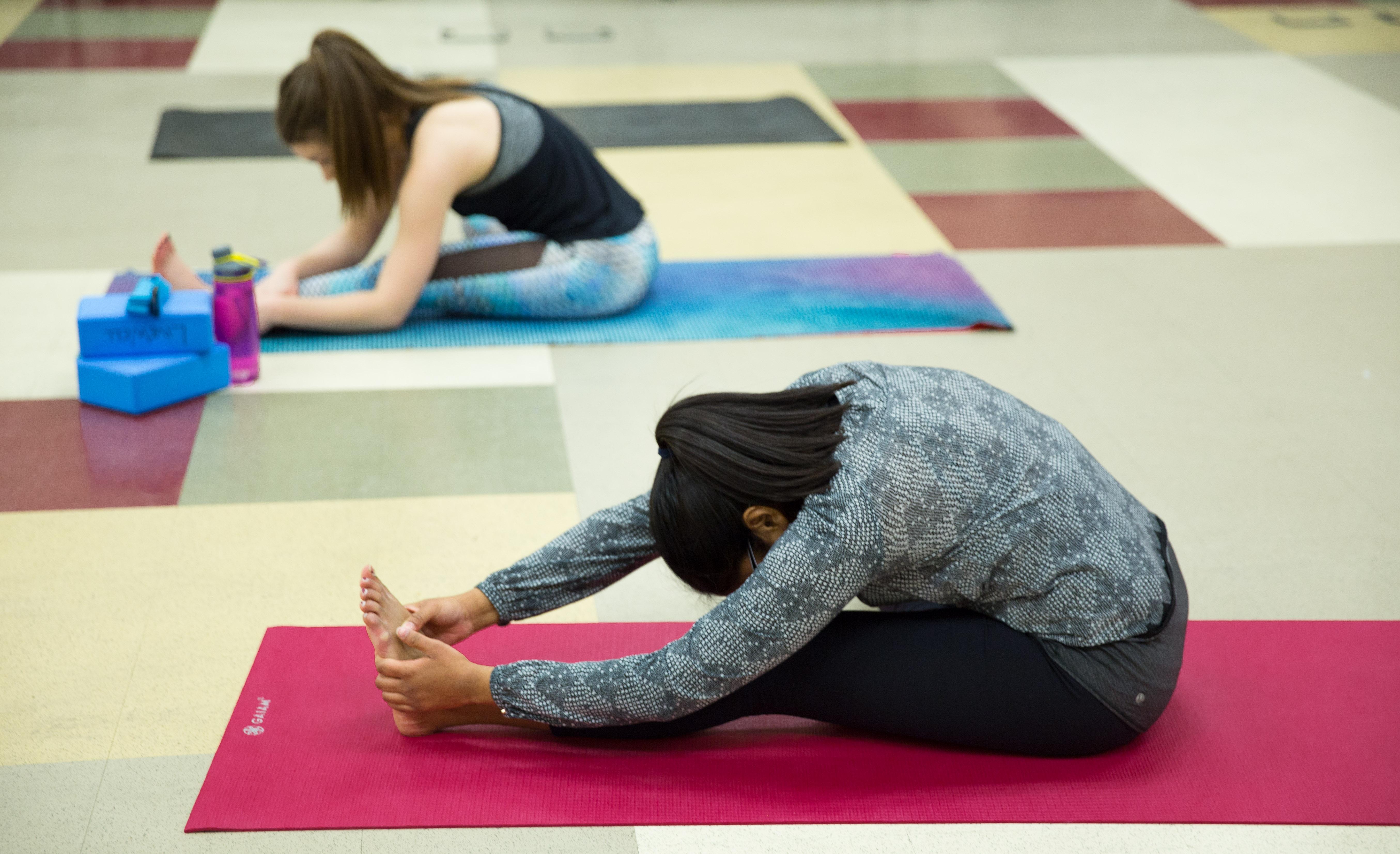 Yoga EngArtShow Spark-6223