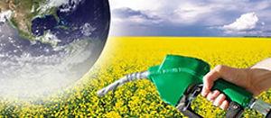 equipos_de_laboratorio_para_biocombustib