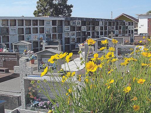 Aumenta o número de sepultamentos no cemitério de Guaíba