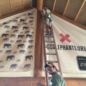 96 Elehants overhead banners install