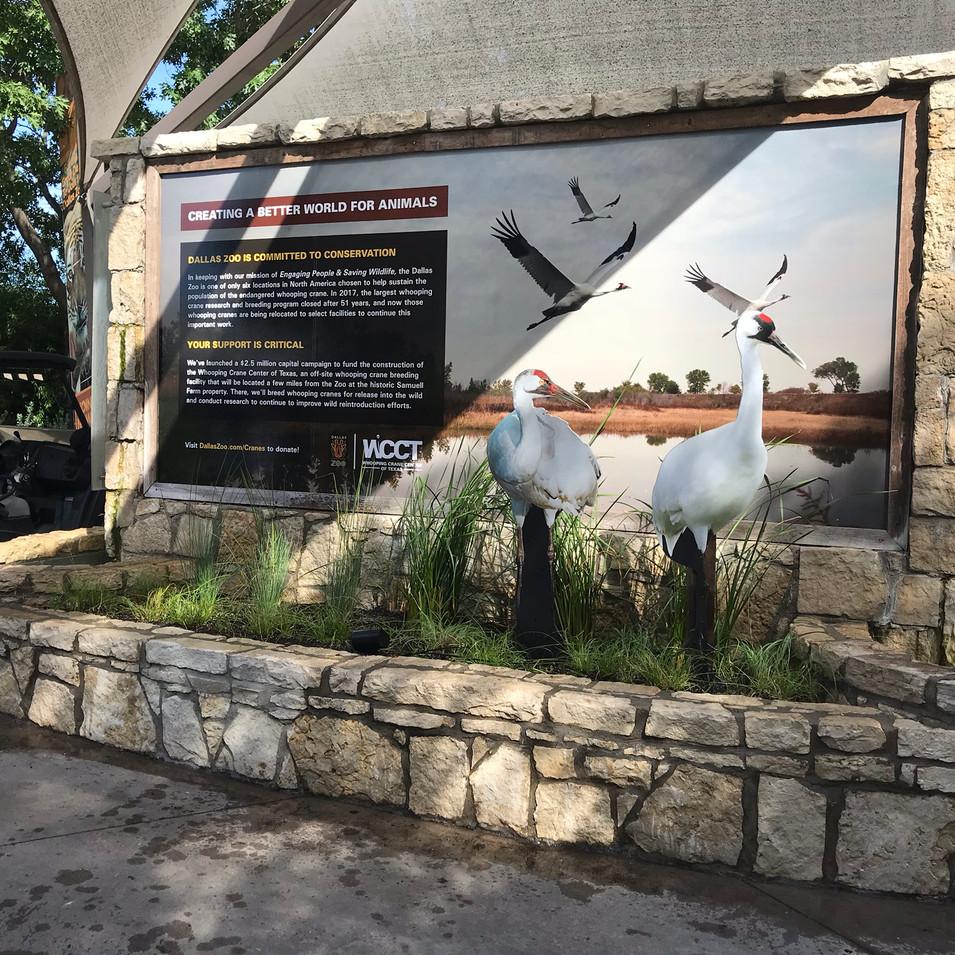 Whooping Crane Center of Texas