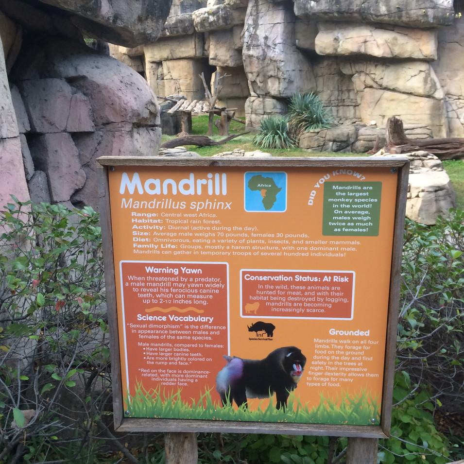 Mandrill I.D. installed