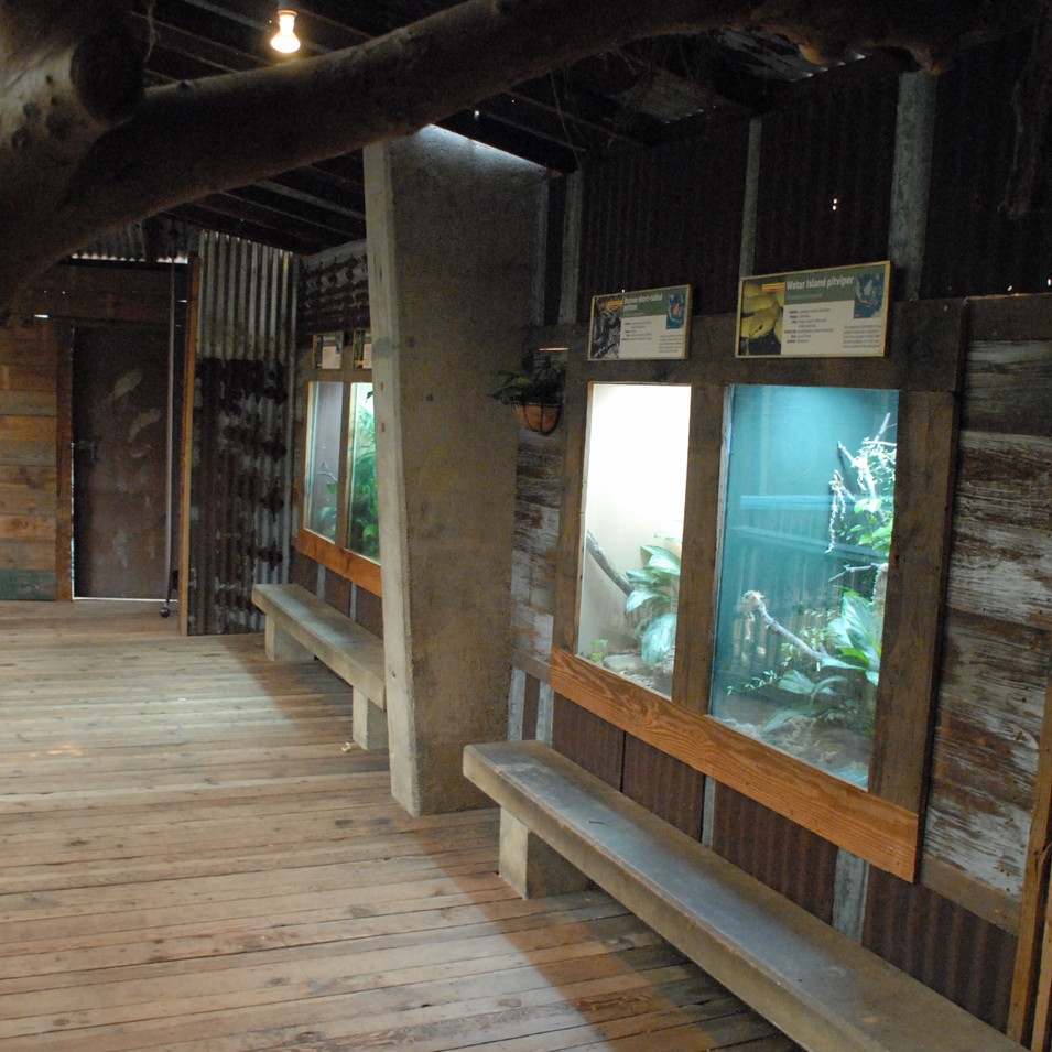 Crocodile cove additional animal habitats
