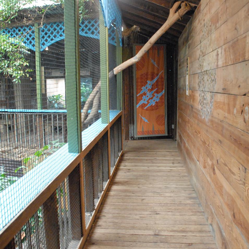 Crocodile Cove hallway