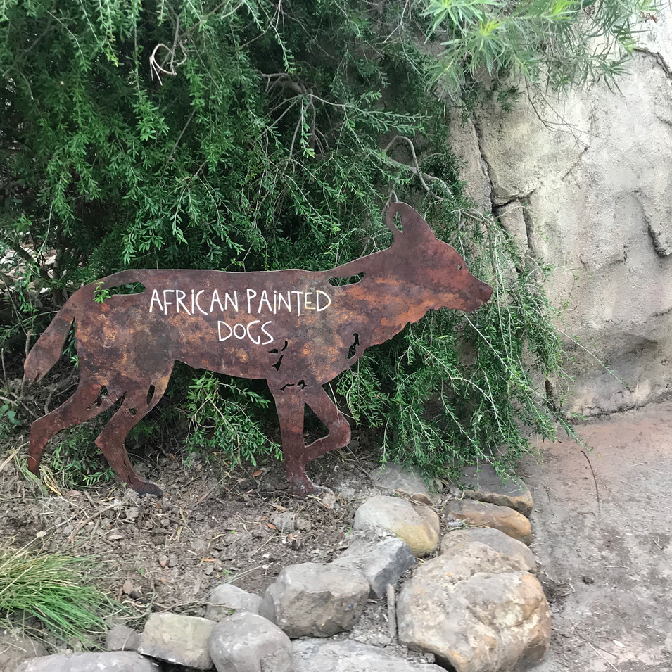 african painted dog die cut sign
