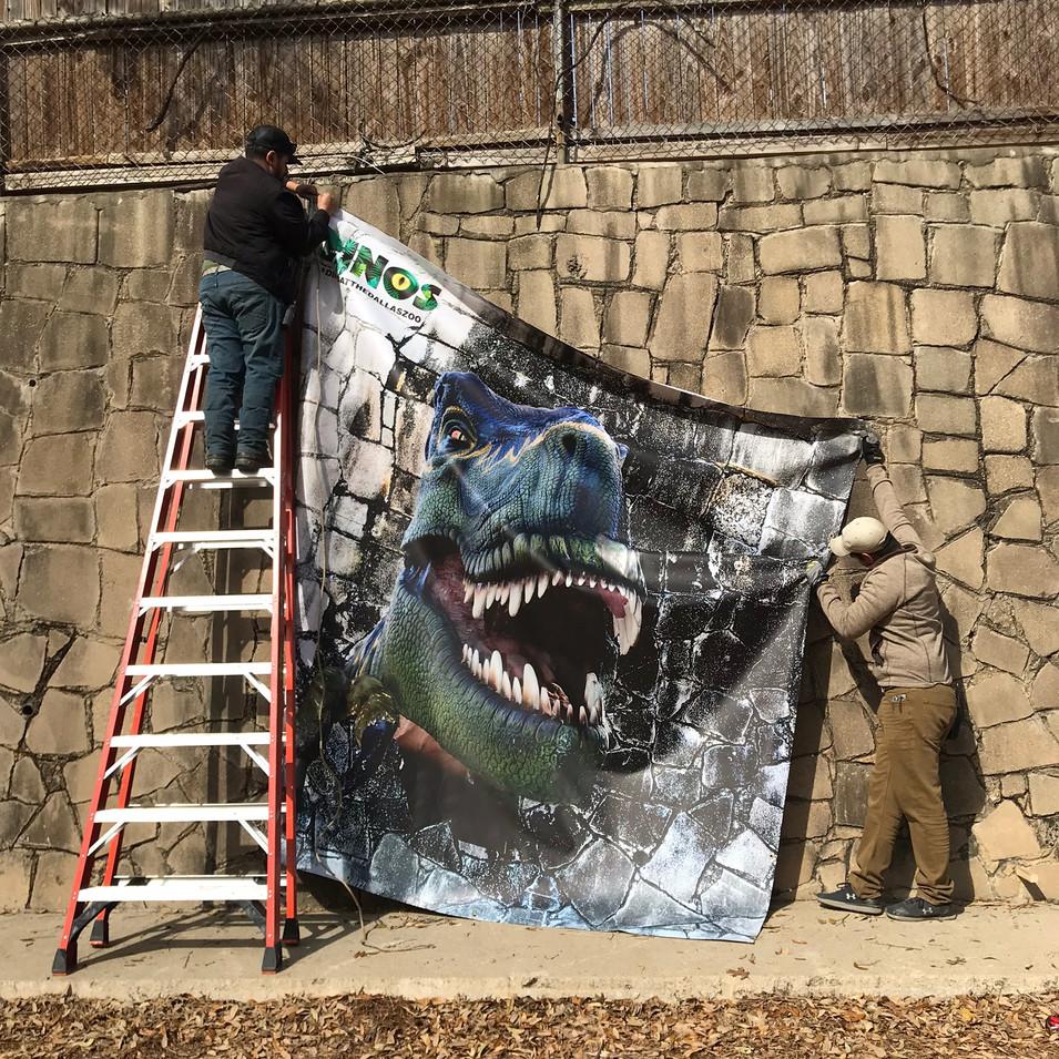 T-rex photo-op install