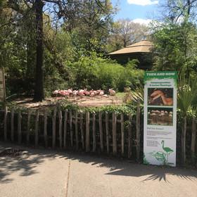 Dinosaur to zoo animals panel