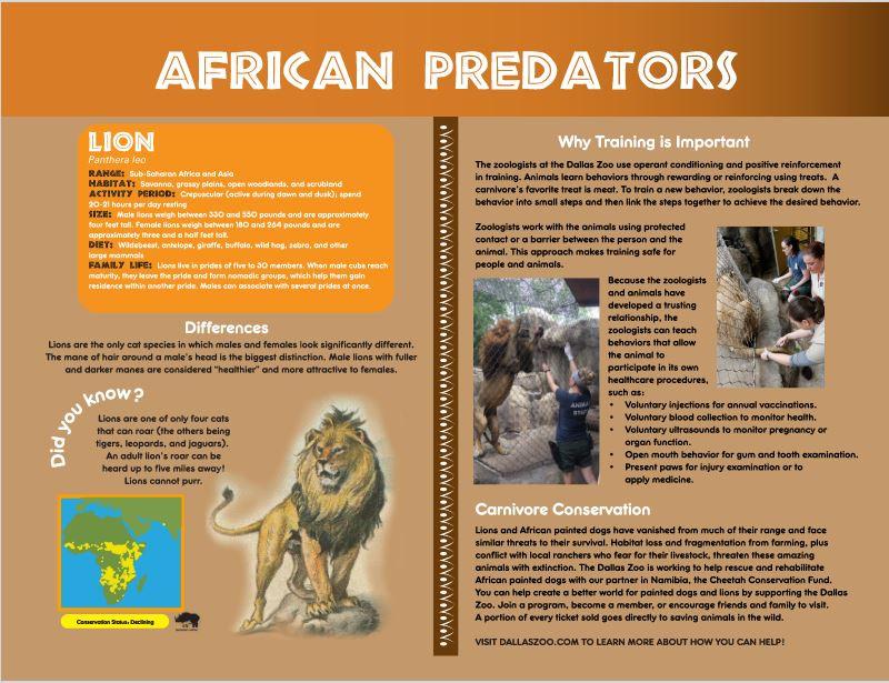 African Predators panels digital