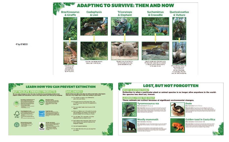 Dino conservation panels