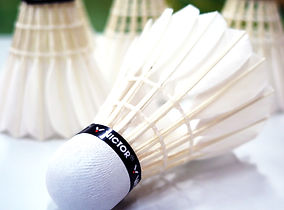 Badminton Achieve MN