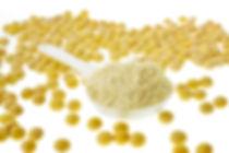 soyprotein.jpg