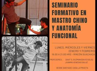 Seminario Formativo en Mastro Chino y Anatomía Funcional