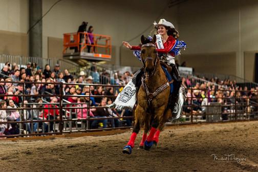 Fair Court Riding Horse.jpg