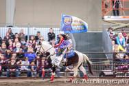 clark county fair.jpg
