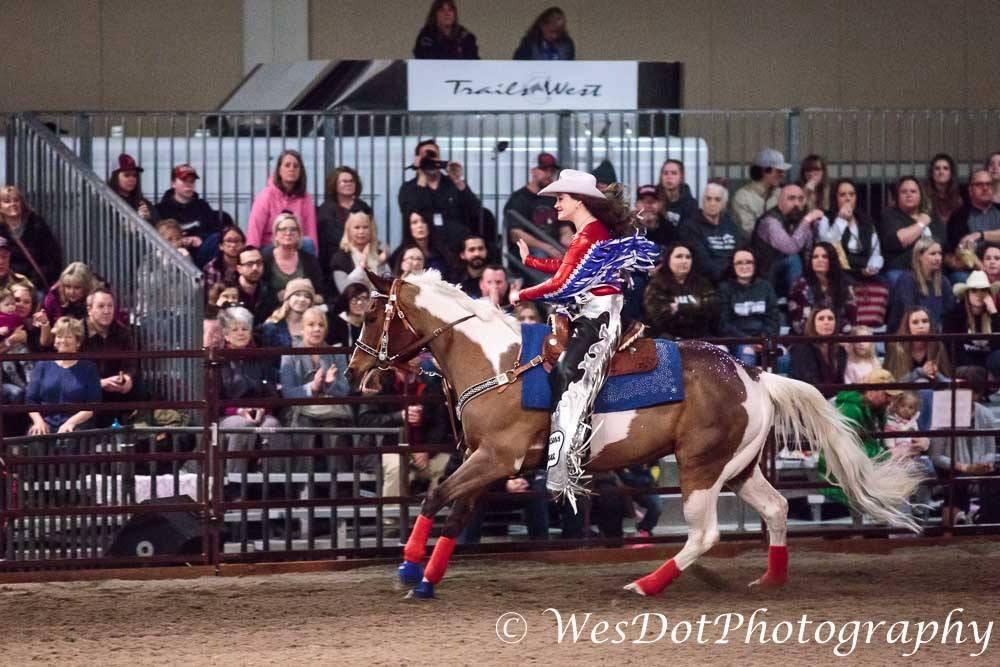 fair court riding horse 2.jpg