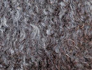 Isi fleece 07292020 2.JPG