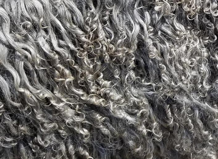 fleece%20june%202020_edited.jpg