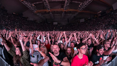 David Guetta Olympiahalle 2019