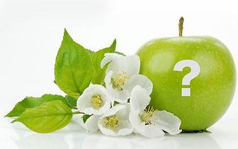 FAQ's Canadian Naturopathic Cancer Clinic Oakille Ontario naturopath