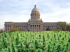 Legislative Calendar Leaves Little Time for Cannabis Bills