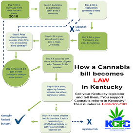 Interview with Pat Dunegan of the Kentucky Cannabis Freedom Coalition