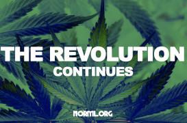 NORML Weekly Legislative Update