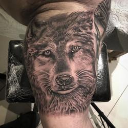 Fair play that man , massive wolf for si