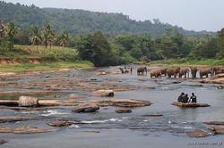 srilanka 13.jpg