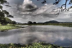 srilanka 05.jpg
