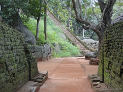 srilanka 07.jpg