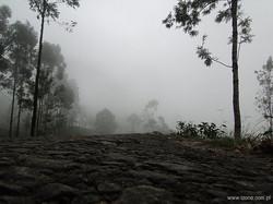 srilanka 12.jpg