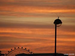 londyn 07.jpg