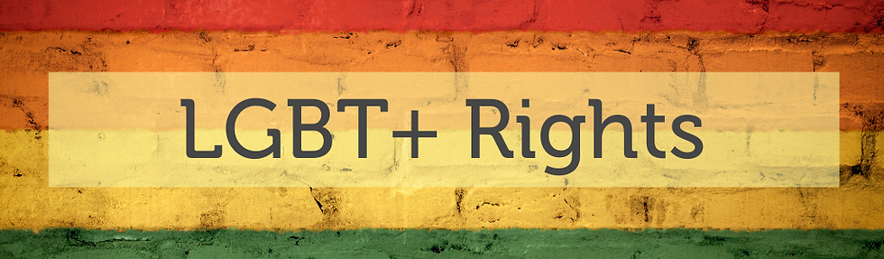 lgbt+ rights banner.png