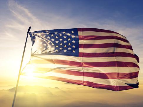 Coronavirus Small Business Support: US Government