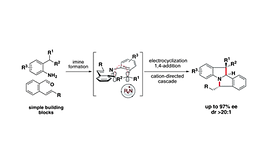 Catalytic Enantioselective Electrocyclic Cascades