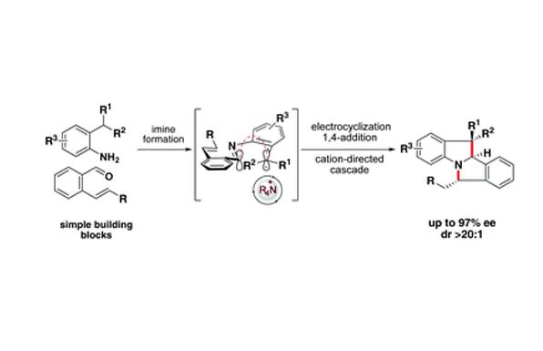 Catalytic Enantioselective Electrocyclic Cascades