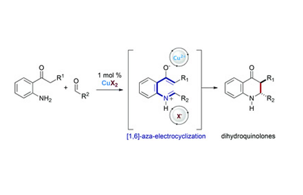 Enantioselective one-pot synthesis of dihydroquinolones via BINOL-derived Lewis acid catalysis