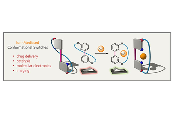 Ion-Mediated Molecular Switches