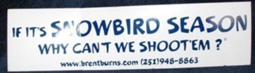 snowbird%2Bbumper_edited.jpg