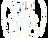 soul trips logo 5.png