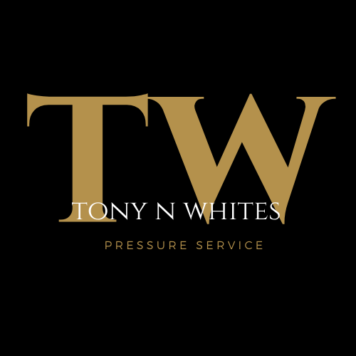 TNW_Logo (1).png