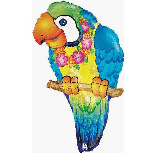 Tropical Parrot Foil