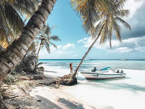 Tropical Presets