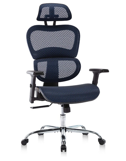 Rimiking Mesh Ergonomic High Back Mesh Chair with 3D Adjustable Arms (Blue)