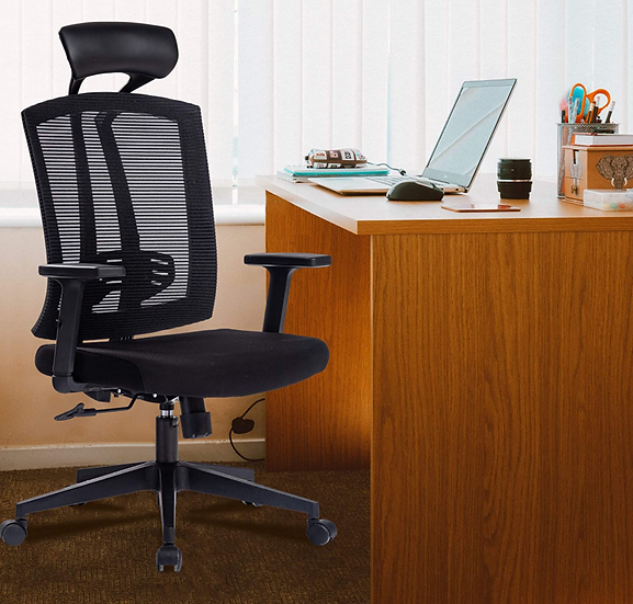 Kasorix Manager's Mesh Chair with Lumbar Support (Black)