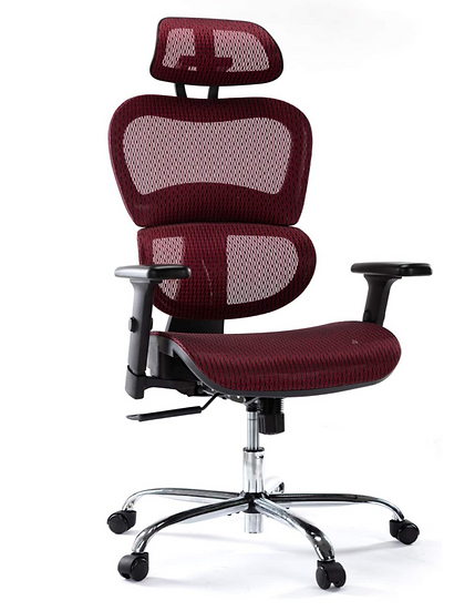 Ergonomic Mesh High Back Chair with Adjustable Headrest and Armrests (Red)