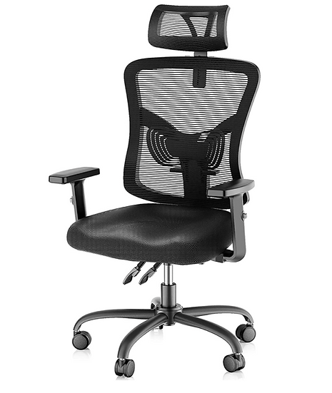 NobleWell Ergonomic High Back Mesh Office Chair with Lumbar Support (Black)