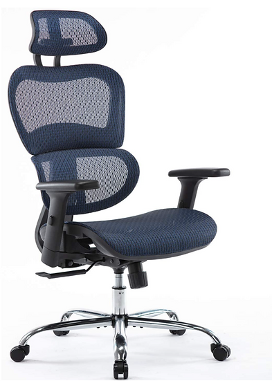 Ergonomic Mesh High Back Chair with Adjustable Headrest and Armrests (Blue)