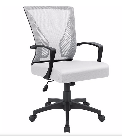Walnew Mesh Mid Back Office Chair with Lumbar Support (Black & White)