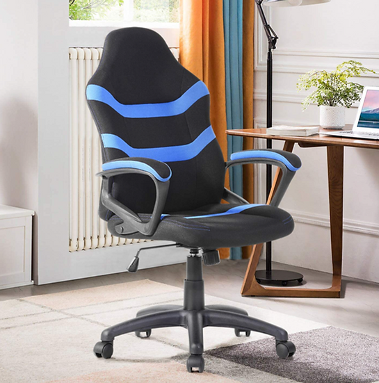 Raamzo Executive Racing Style High Back Gaming/Office Chair (Black & Blue)